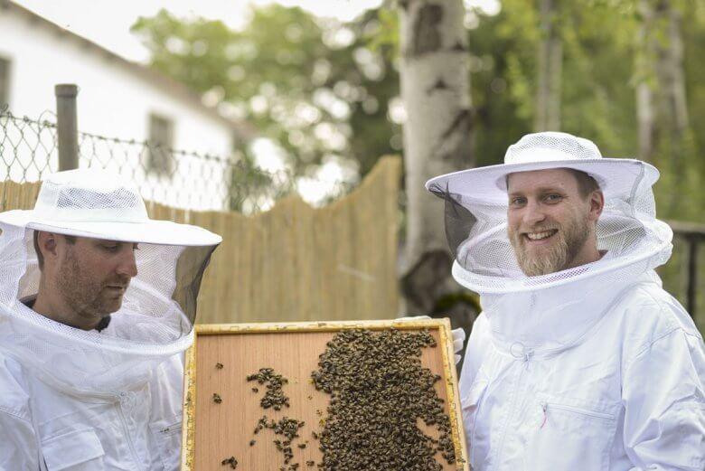 Memodo Bienenpatenschaft