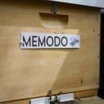 Bienenkasten Memodo