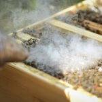 Honigwaben Rauch