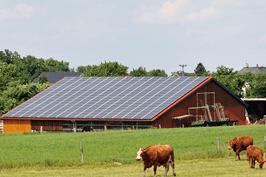 memodo-gewerbe-projekt-photovoltaik-landwirtschaft